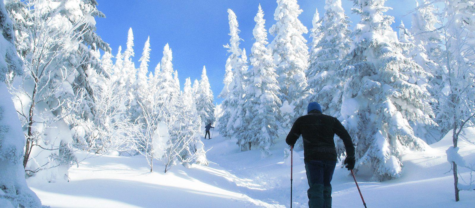7-commandements-hiver-quebecois-geant-vallee-fantomes-saguenay-lac-saint-jean-quebec-le-mag