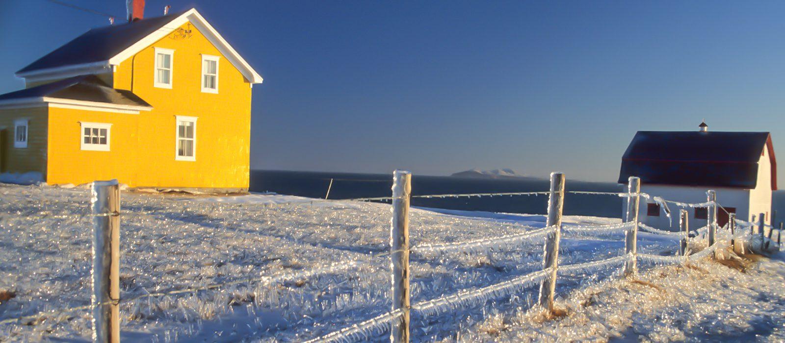 un-hiver-actif-au-quebec-iles-de-la-madeleine-bebe-phoque-quebec-le-mag