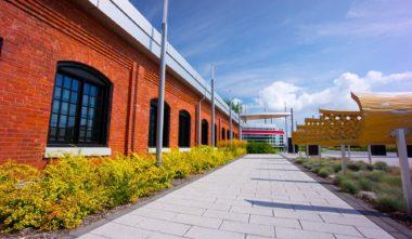 borealis-musee-papier-exposition-atelier-quebec-le-mag