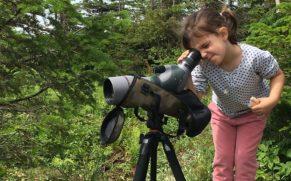 parc-national-de-la-gaspesie-enfant-curieux-quebec-le-mag