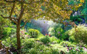 jardins-de-metis-gaspesie-jardins-quebec-le-mag