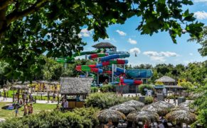 zoo-de-granby-cantons-de-lest-parc-attraction-quebec-le-mag