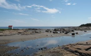 la-route-des-baleines-cote-nord-paysage-quebec-le-mag