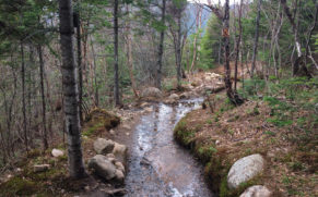 parc-national-des-hautes-gorges-de-la-rivière-malbaie-charlevoix-riviere-quebec-le-mag