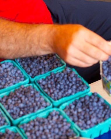 experience-gastronomie-bleuet-perle-bleue-quebec-le-mag