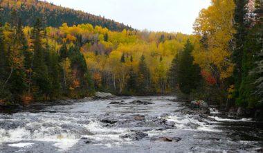 gite-au-coeur-du-fjord-nature-saguenay-lac-saint-jean-quebec-le-mag