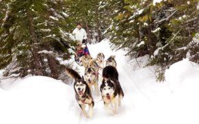 manoir-richelieu-hiver-traineau-a-chien-neige-quebec-le-mag