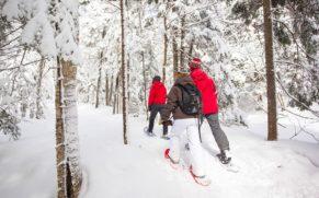 parc-mont-megantic-hiver-cantons-de-lest-quebec-le-mag