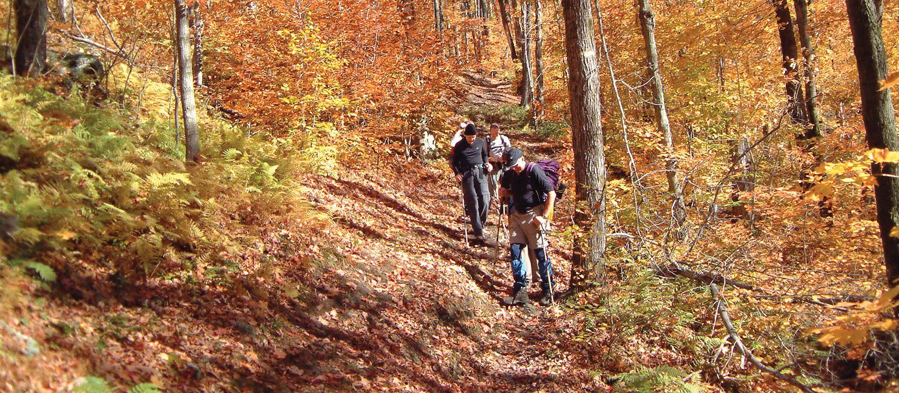 randonnees-en-automne-au-quebec-parc-environnement-naturel-sutton-cantons-de-lest-quebec-le-mag
