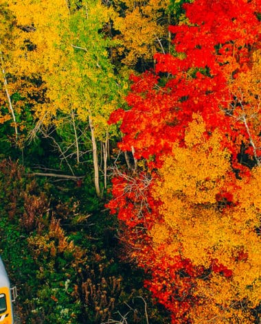 train-de-charlevoix-tourisme-charlevoix-automne-quebec-le-mag