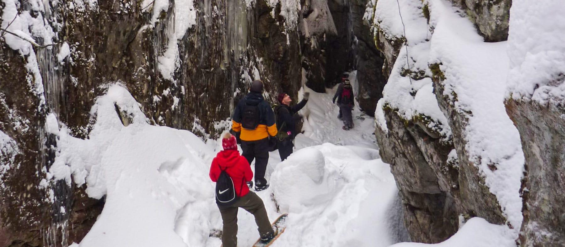 Raquette-Organisaction-Saguenay-Lac-St-Jean-quebec-le-mag